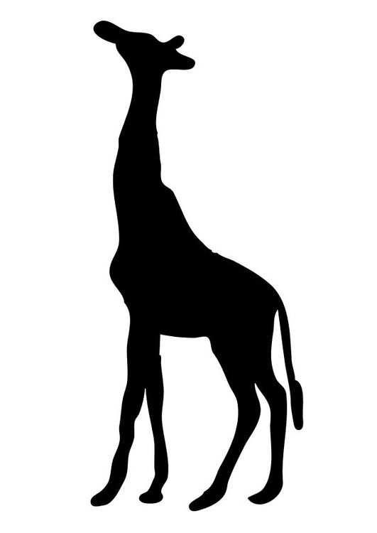 Kleurplaat Giraf Met Afbeeldingen Giraf Silhouet