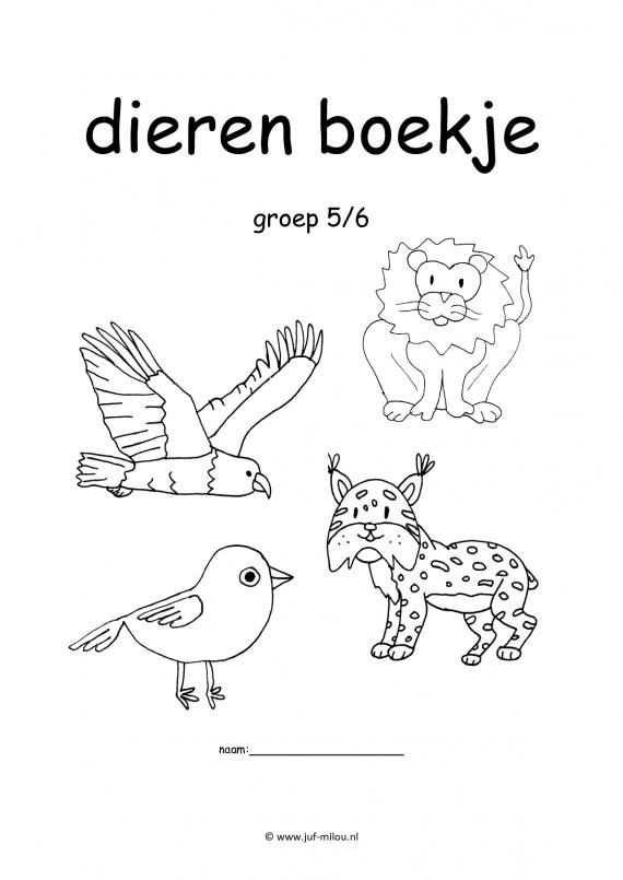 Werkboekje Dieren Met Afbeeldingen Dieren Activiteiten Dieren