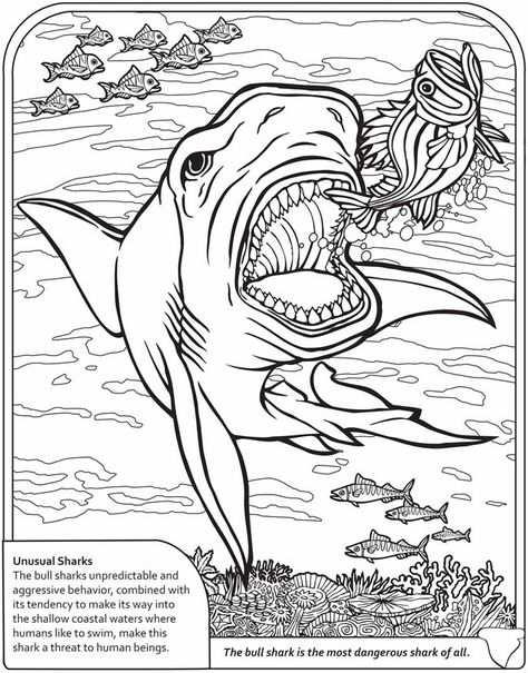 Dinosaur And Sharks Coloring Pages Kleurplaten Haai Kleuren