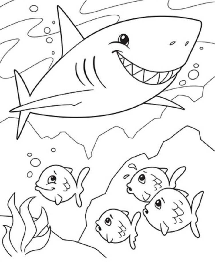 Shark And Fish Coloring Pages Check More At Http Coloringareas