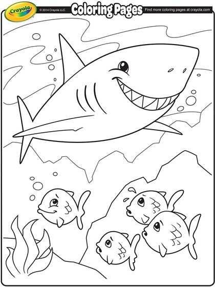 Shark Coloring Page Haai Tekenen Kleurplaten Haai