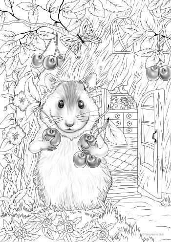 Hamster Coloring Books Adult Coloring Pages