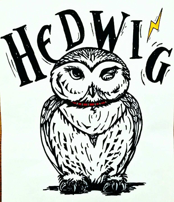 Hand Drawn Hedwig By Me Mit Bildern Harry Potter Kunst Wenn