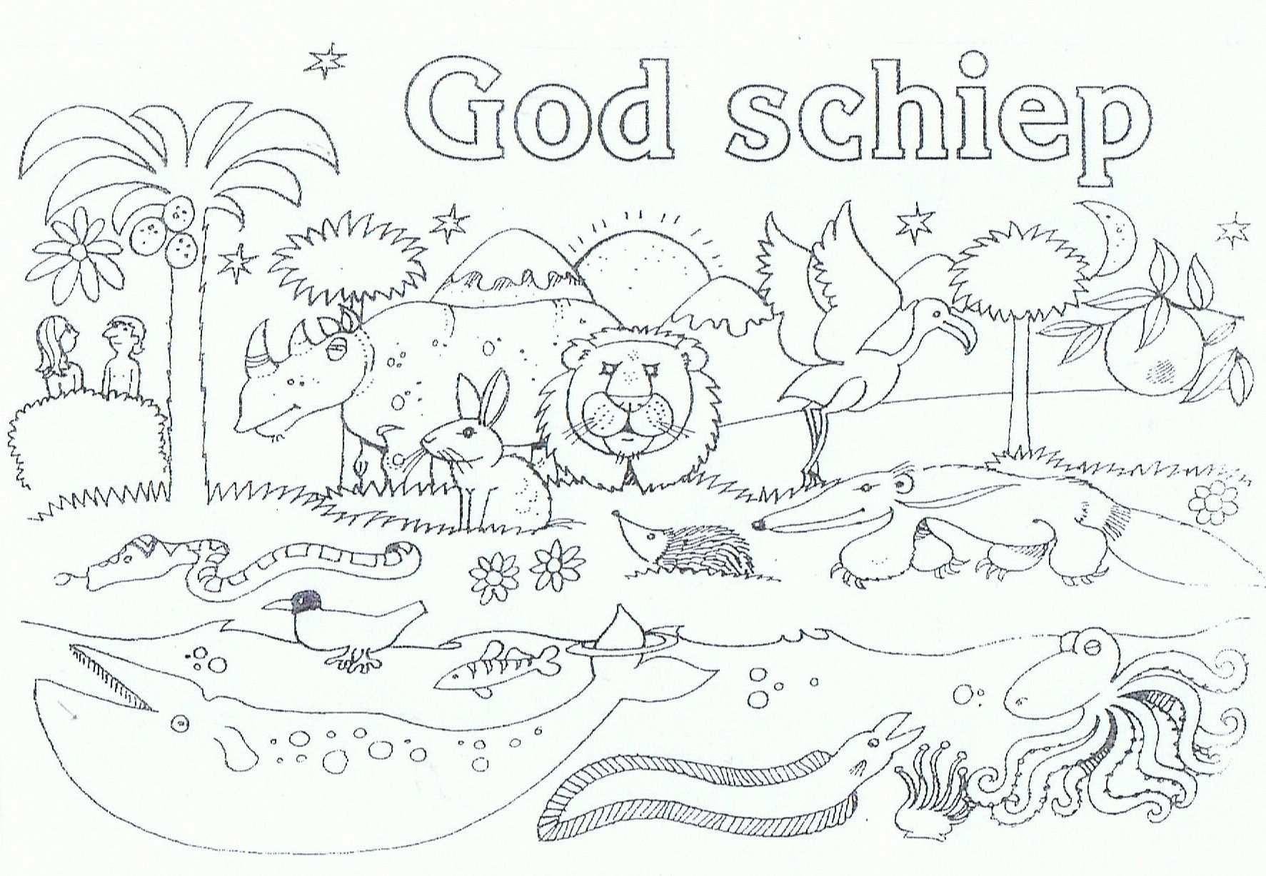 Kleurplaat Schepping Bijbelknutselwerk Kleurplaten Bijbel