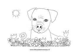 Hond Archives Kleurplaten Voor Jou