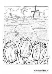 Kleurplaat Bollenvelden Nederland Dutch Spring Preschool Coloring