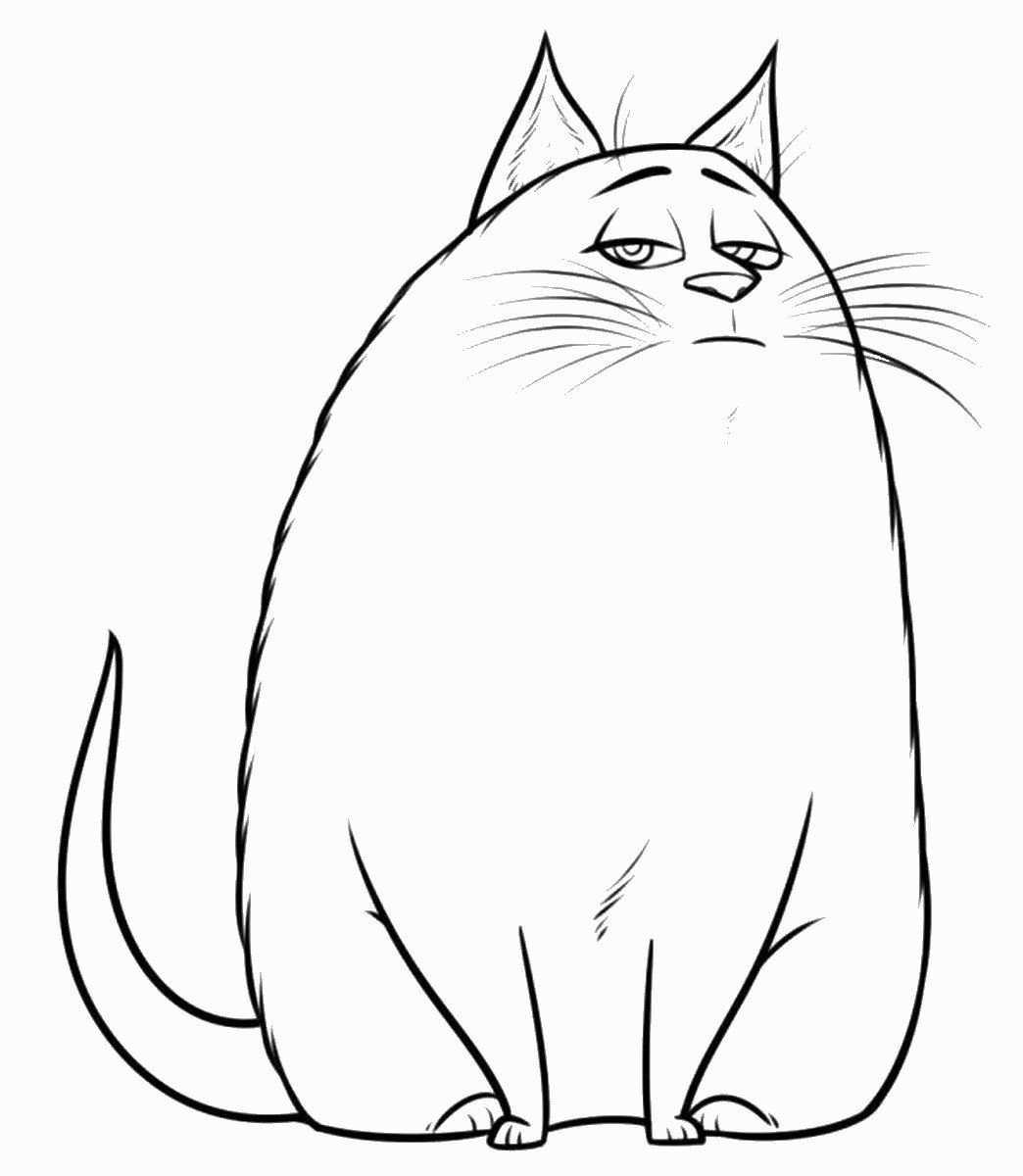 Coloring Book Fruits And Vegetables Secret Life Of Pets Cat