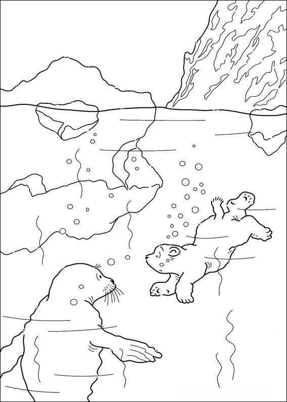 Print Kleine Ijsbeer Zwemt Kleurplaat Kleurplaten Dieren