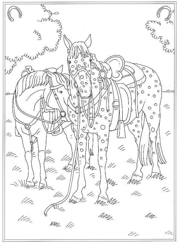 63 Kleurplaten Van Paarden In 2020 Paarden Afbeeldingen