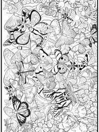 60 Kleurplaten Voor Volwassenen Gratis Te Printen Butterfly