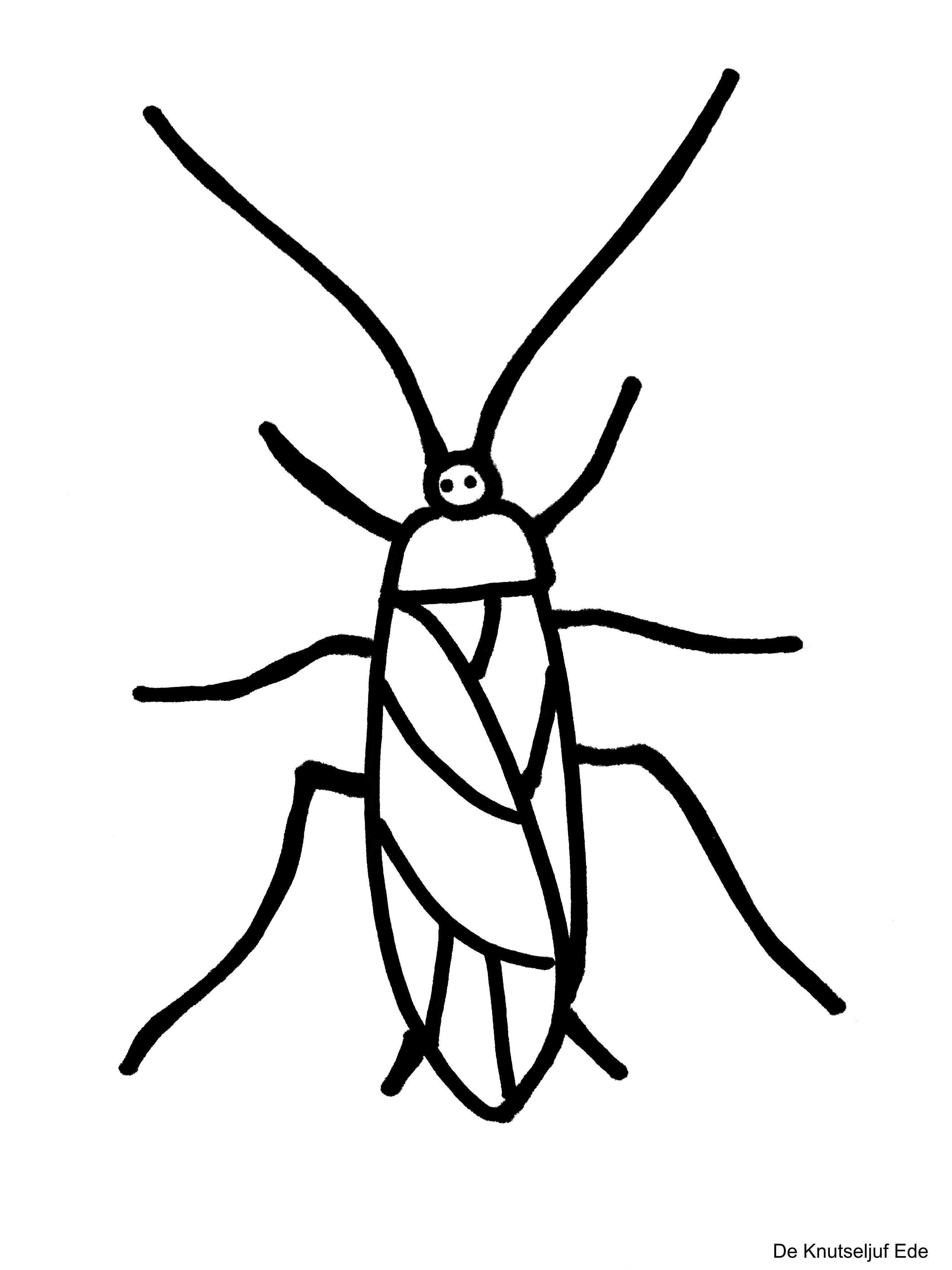Kleurplaten Kriebelbeestjes Kleurplaten Beestjes Gratis