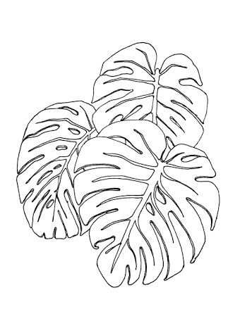 kleurplaat jungle blad