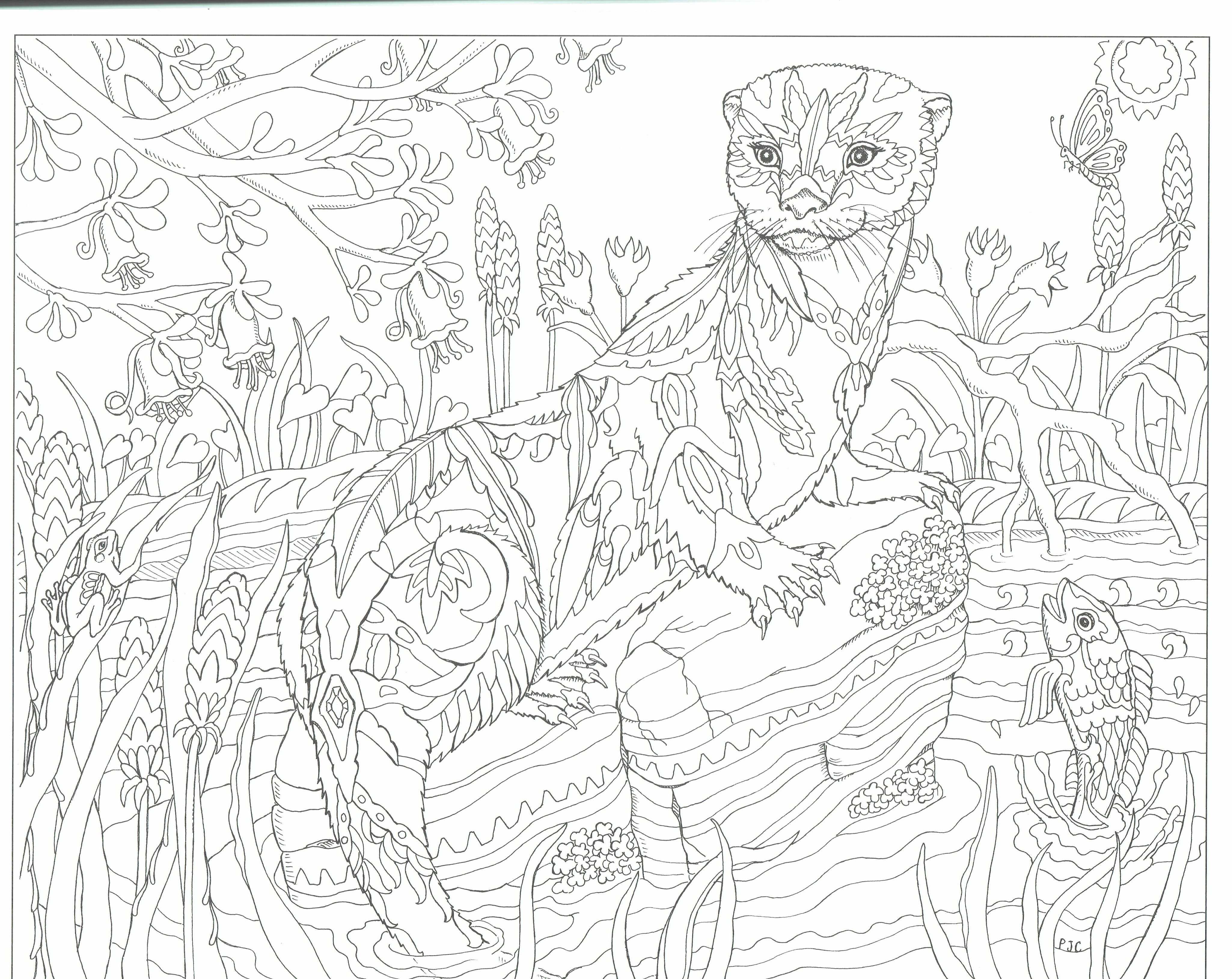 This Will Print On 11x17 Just As Nice As 8 5x11 Animal Coloring