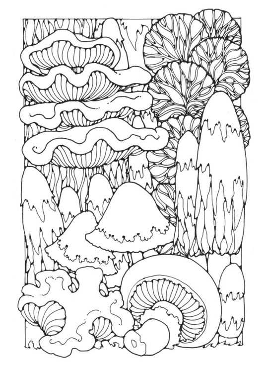 Kleurplaat Paddenstoelen Coloring Page Mushrooms Adult Coloring