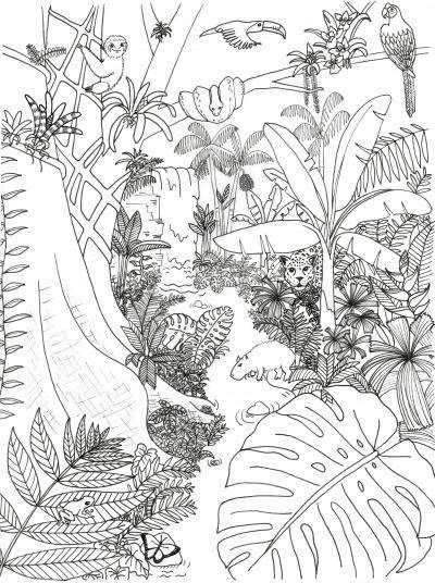 Rainforest Animals And Plants Coloring Page In 2020 Mit Bildern