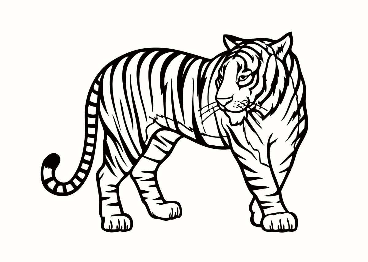 Jungle Animal Coloring Pages Jungle Animals Coloring Pages To
