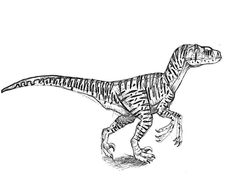 Jurassic World Printable Coloring Pages Coloring Pages Fathers
