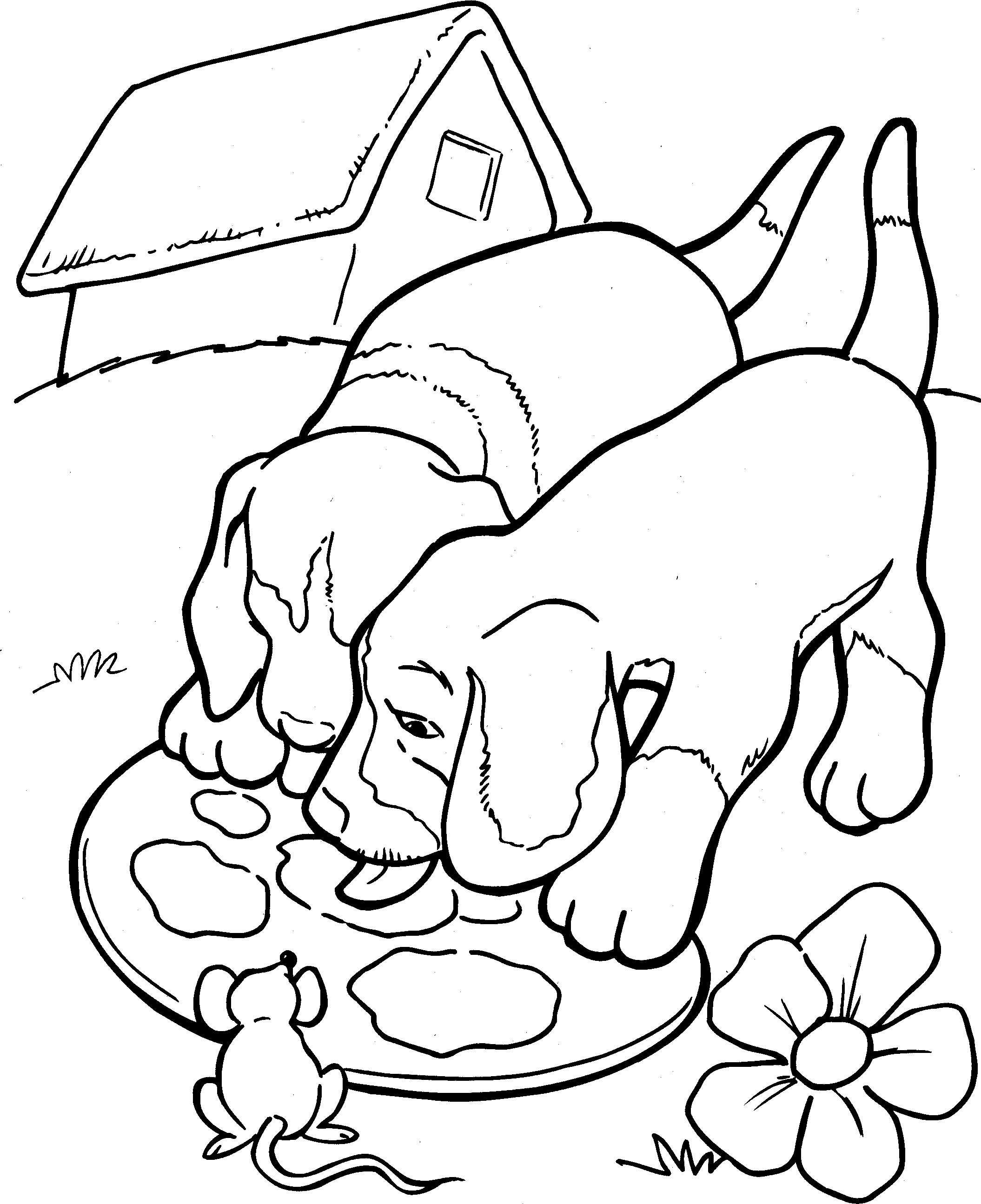 Honden Kleurplaat With Images Dog Coloring Page Pattern