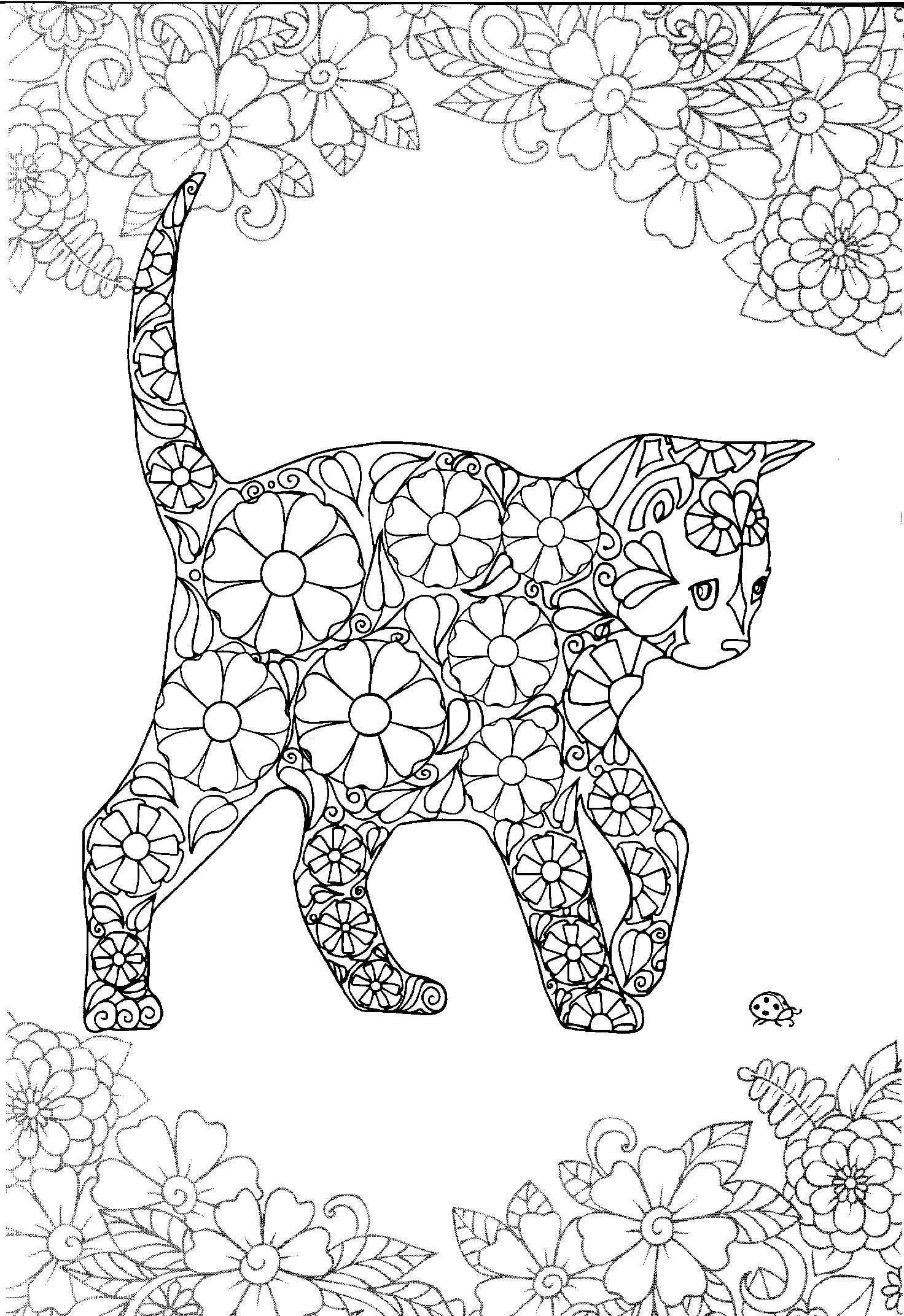 Pin Van Heidi De Graef Op Kleurplaten Katten En Honden