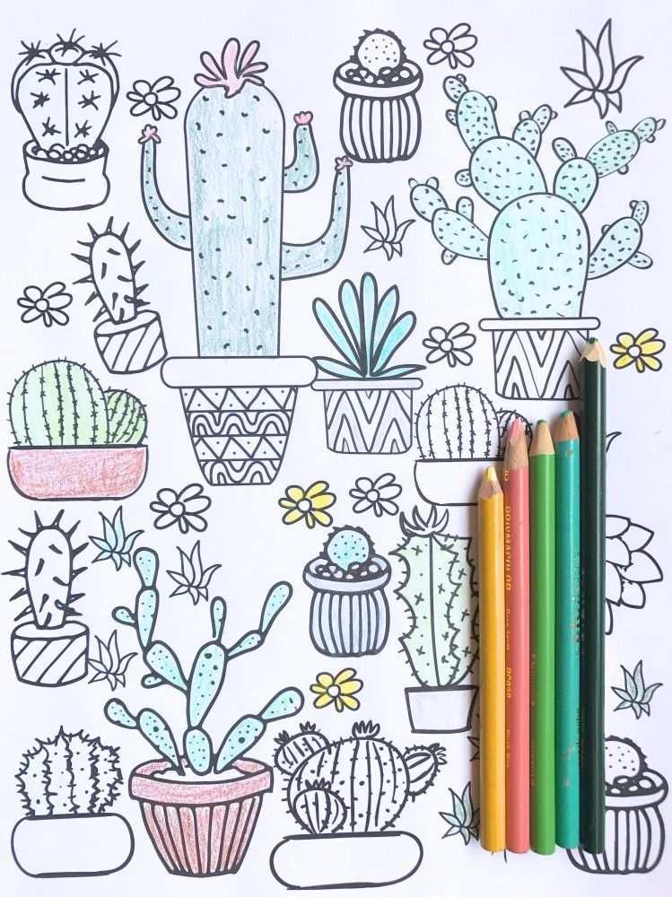 Gratis Printable Kleurplaat Cactus Adult Coloring Pages Zomer