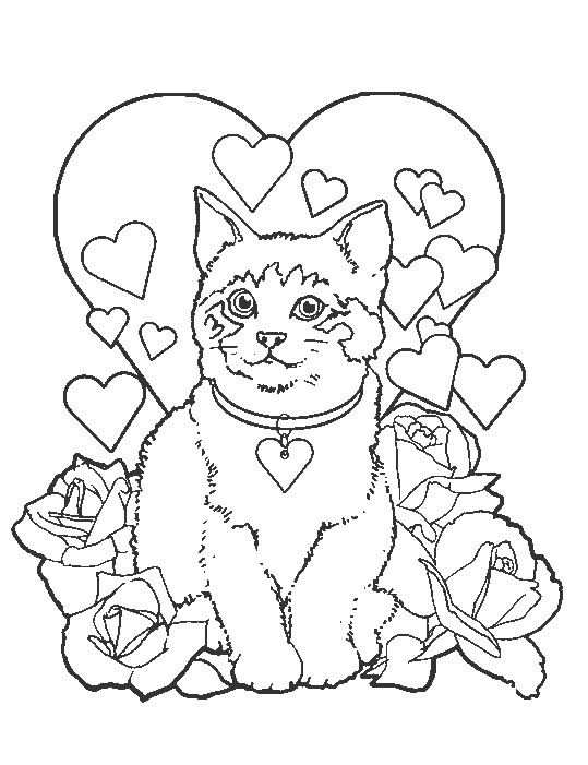 Coloring Page Cats And Dogs Cats And Dogs Kleurplaten Dieren