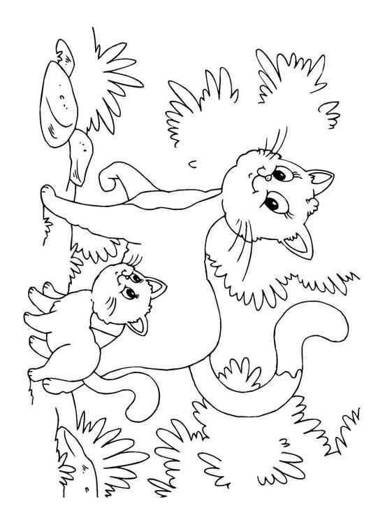 Kleurplaat Kat En Kitten Gratis Kleurplaten Om Te Printen With