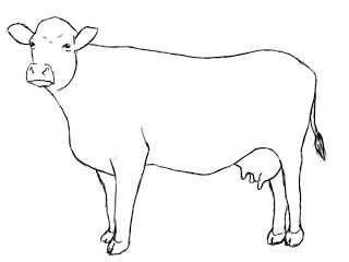 How To Draw A Cow Dieren Tekenen Koeien Schilderen Dieren