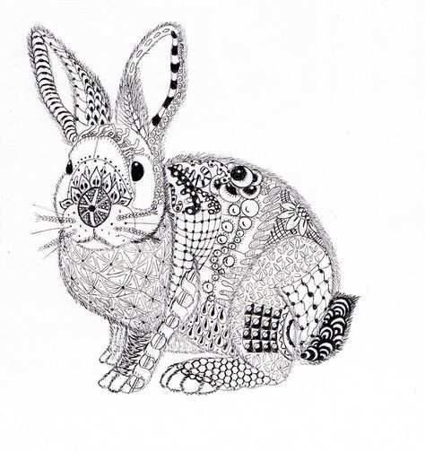 Ben Kwok Rabbit Bunny Coloring Pages Rabbit Artwork