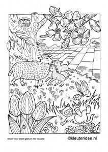 Kleurplaat Lente Kleuteridee Nl Spring Preschool Coloring