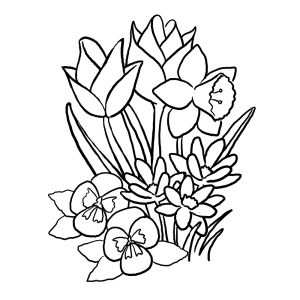 Bloemen Kleurplaten Met Afbeeldingen Kleurplaten Bloem