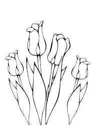 Afbeeldingsresultaat Voor Lente Bloemen Tekenen Bloemen Tekenen