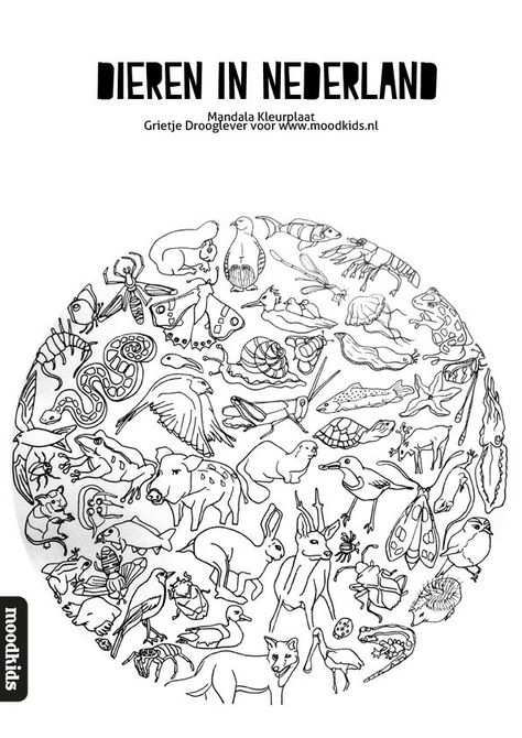 Mandala Dieren Kleurplaat Gratis Download Kleurplaten Dieren