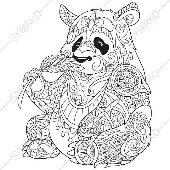 Coloring Pages For Adults Panda Bear Adult Coloring Pages