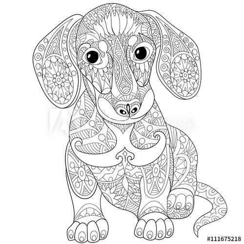 Zentangle Stylized Cartoon Dachshund Dog Isolated On White