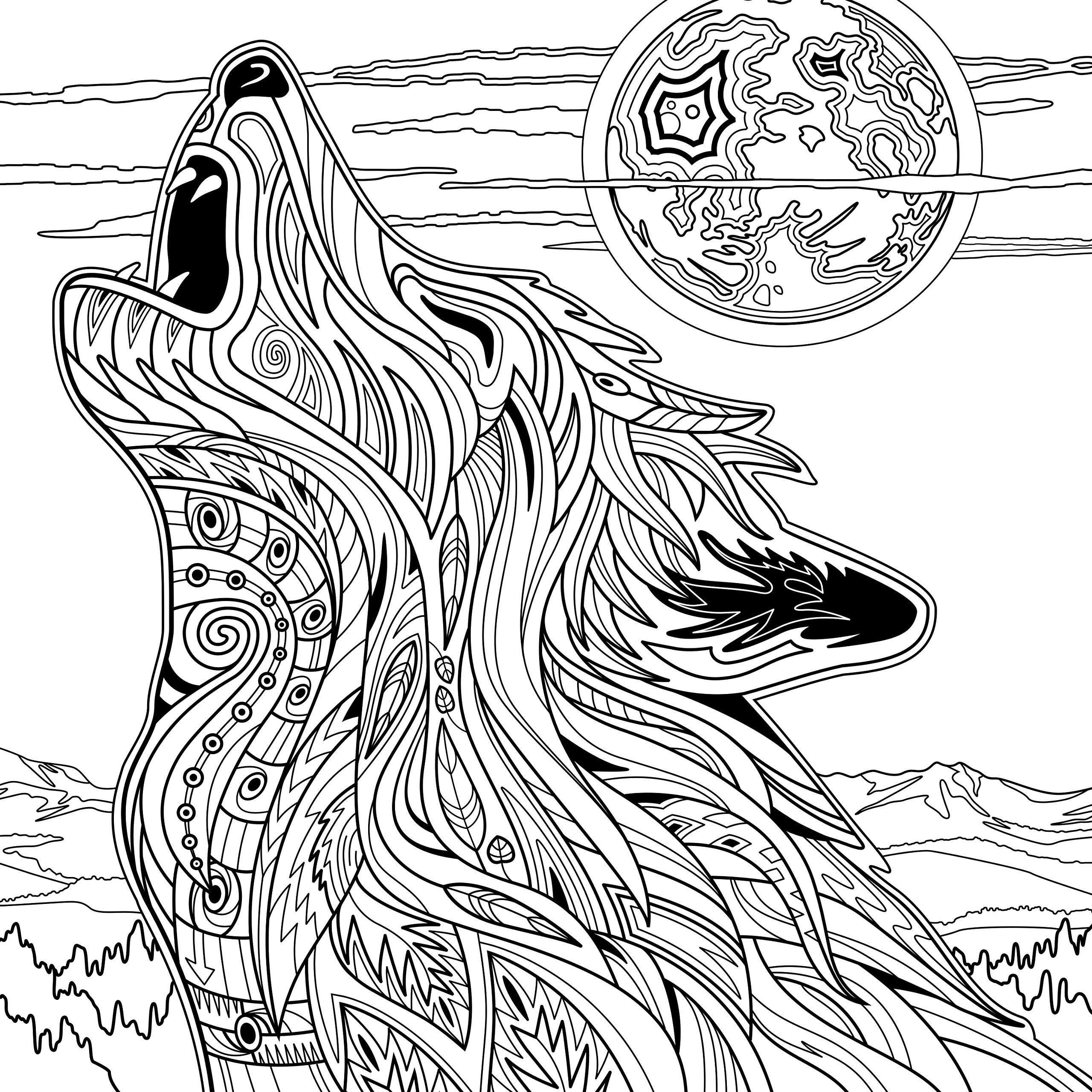 Yellowstone National Park Adult Coloring Book Dave Ember Don