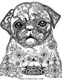 Coloring Volwassenen26 Dibujos De Perros Tatuaje Pug Animales