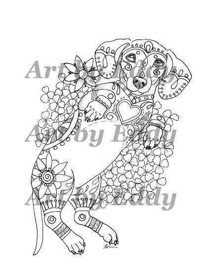 Art Of Dachshund Coloring Book Volume No 2 By Artbyeddy On Etsy