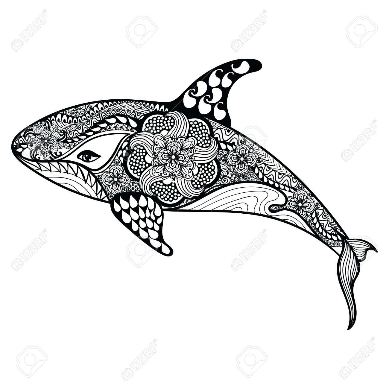 Stock Vector Delfin Dibujo Dibujos Y Pinturas