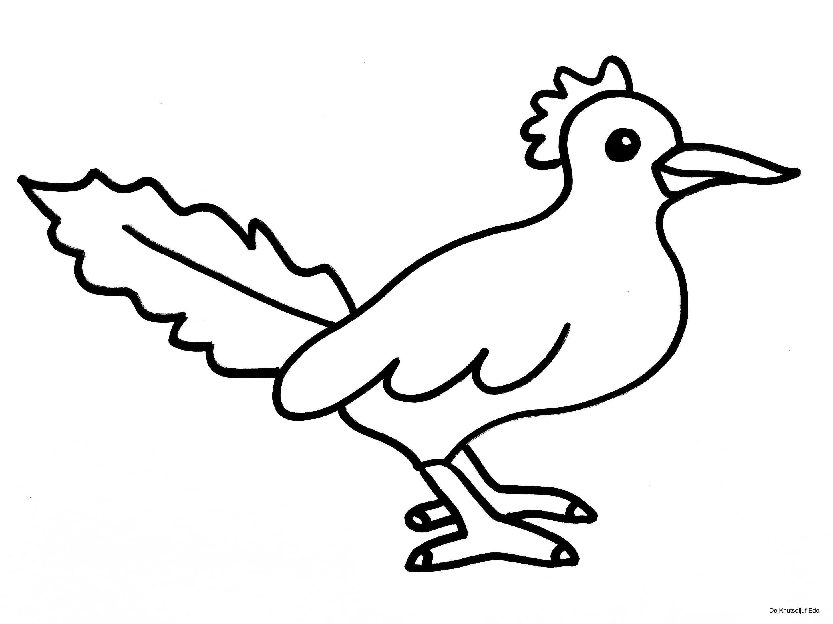 Kleurplaten Vogels Met Afbeeldingen Kleurplaten Vogels Vogeltjes