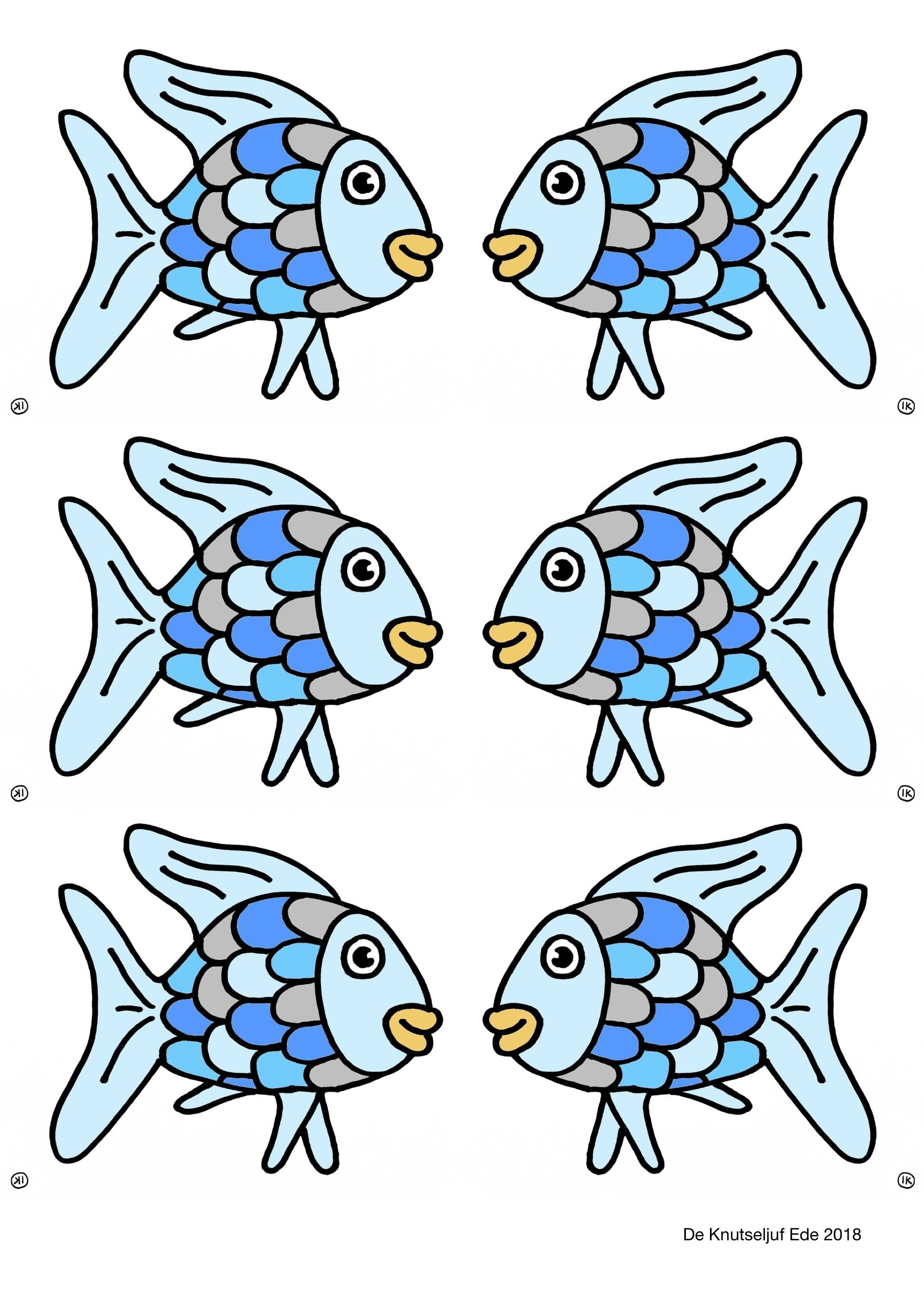 De Mooiste Vis Van De Zee Knutselen Vis
