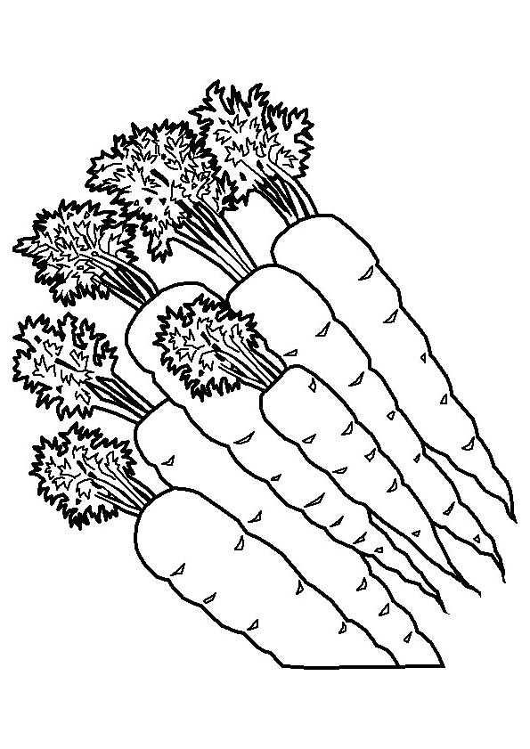 Kleurplaat Wortelen Embroidery For Kitchen Frutas Y Verduras
