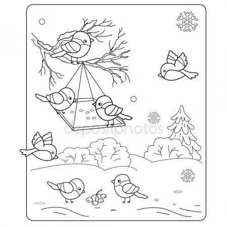 Kleurplaat Pagina Overzicht Van De Cartoon Vogels In De Winter