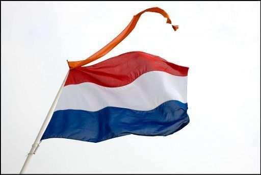 Nederlandse Vlag Met Wimpel Con Immagini