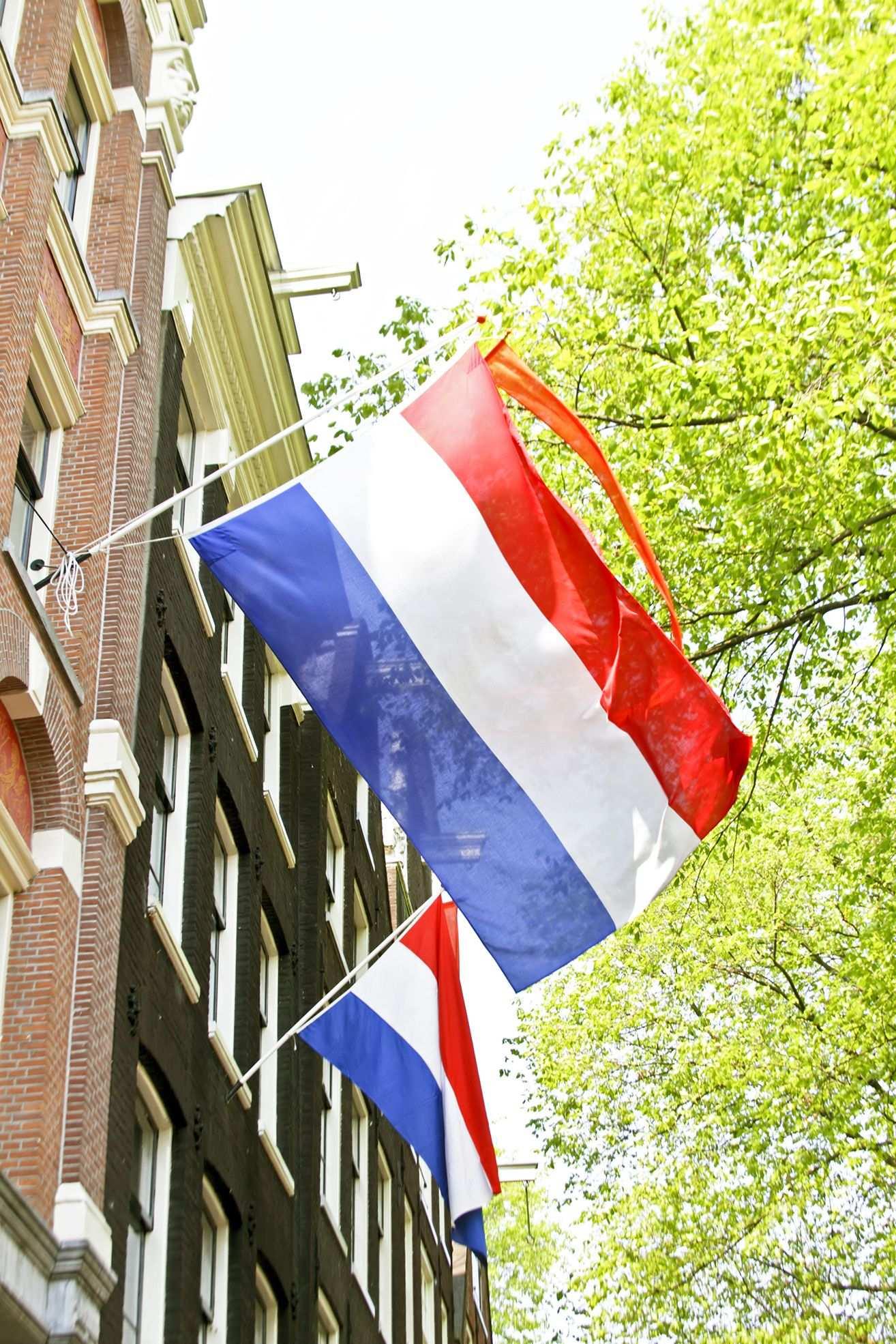 Met Vlag En Wimpel Koningsdag Vieren Vlaggen Buiten