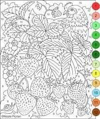 Afbeeldingsresultaat Voor Kleuren Op Nummer Kleurplaten Adult