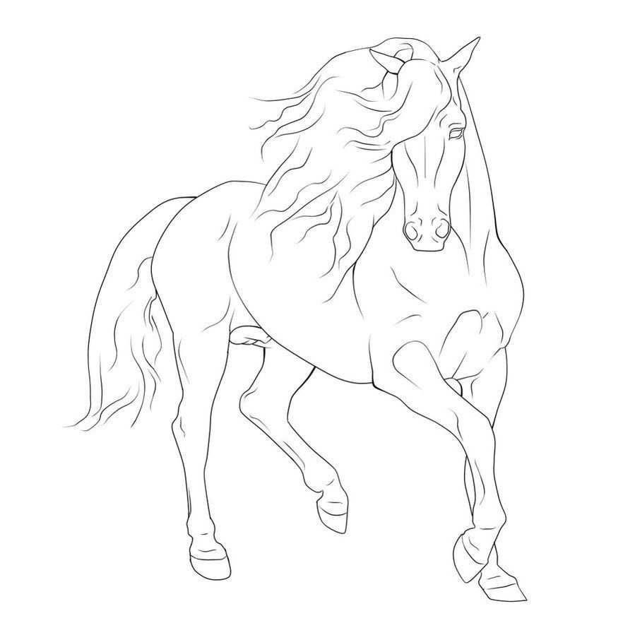 Idee Van Antje Schroor Op Paarden Paard Tekeningen
