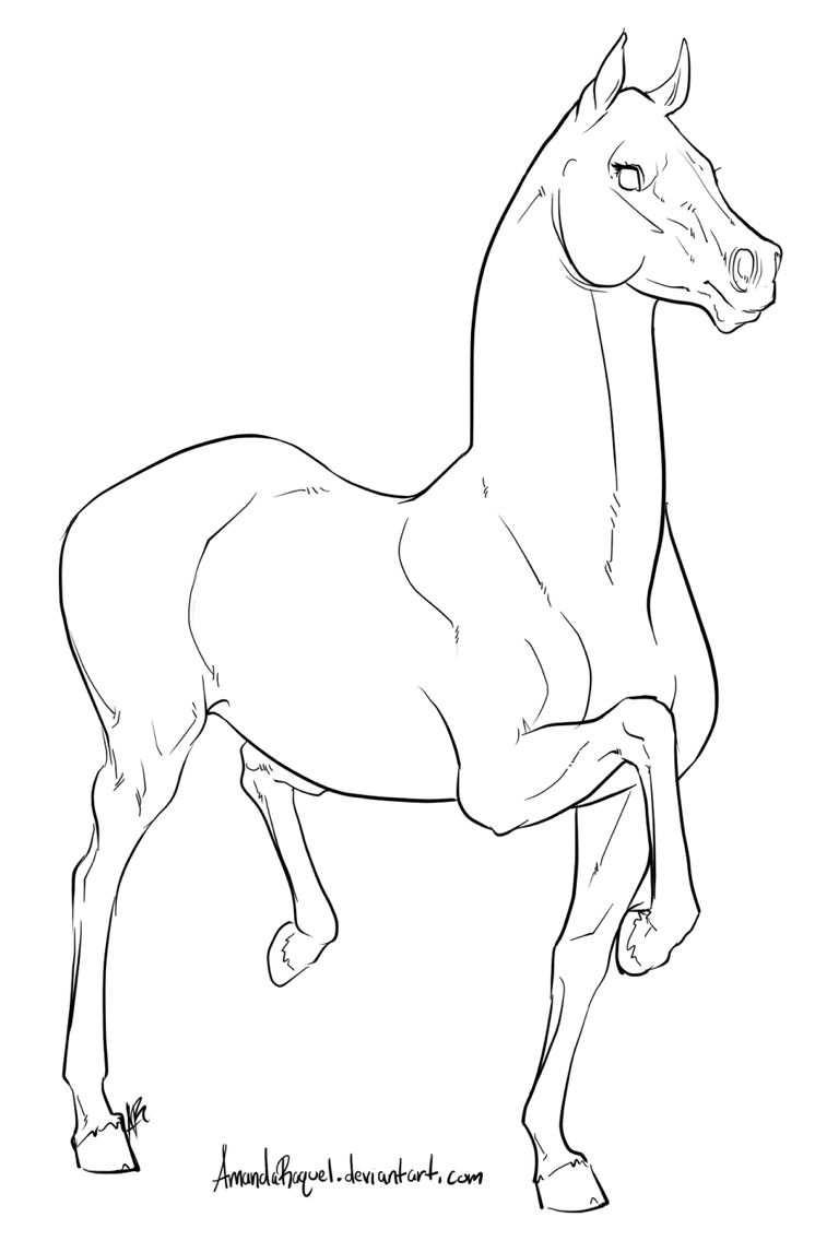 Horse Coloring Pages Met Afbeeldingen Paard Tekeningen