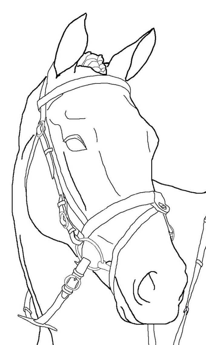 Horse Coloring Pages Paard Tekeningen Tekenen Kleurplaten