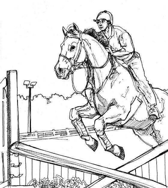 Kleuren Nu Paard Met Ruiter Springt Over Hindernis Kleurplaten
