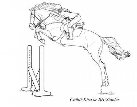 Pin By Gaby On Animal Drawings With Images Horse Jumping